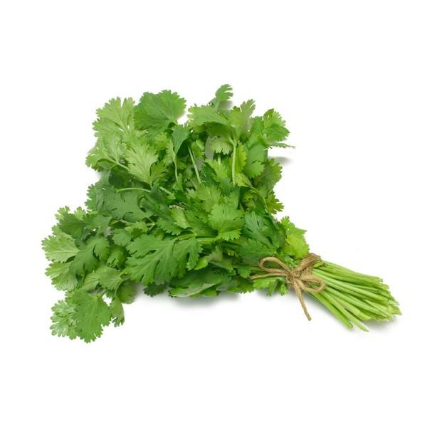 Organic Coriander, Fresh – 1 Bunch