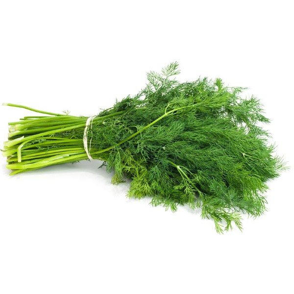 Organic Dill, Fresh – 1 Bunch
