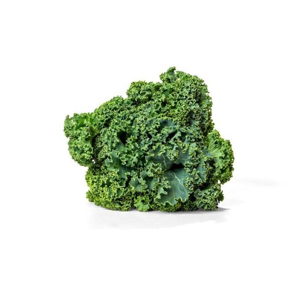 Organic Kale, Curly Green – 1 Bunch