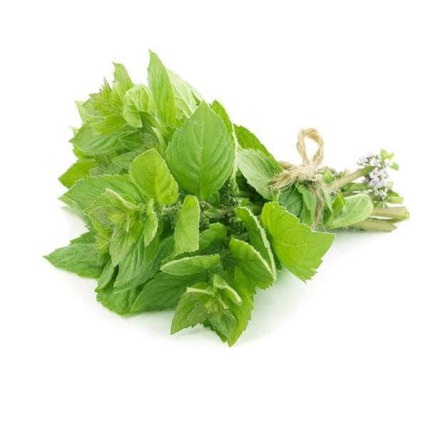 Organic Mint, Fresh – 1 Bunch