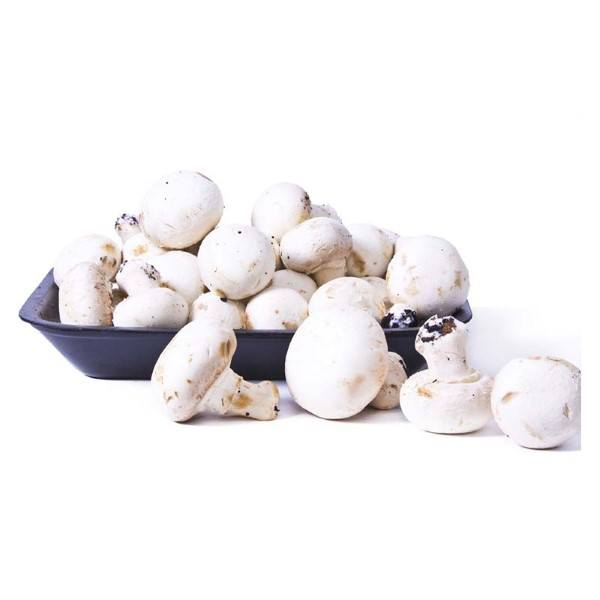 Organic Mushrooms, White Button – 150g Punnet