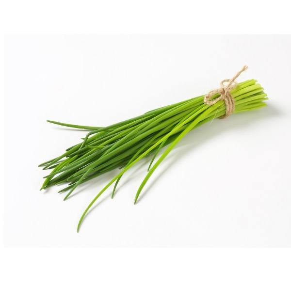 Organic Onion Chives, Fresh – 1 Bunch