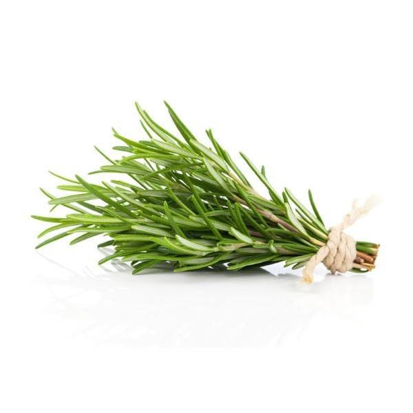Organic Rosemary, Fresh – 1 Bunch