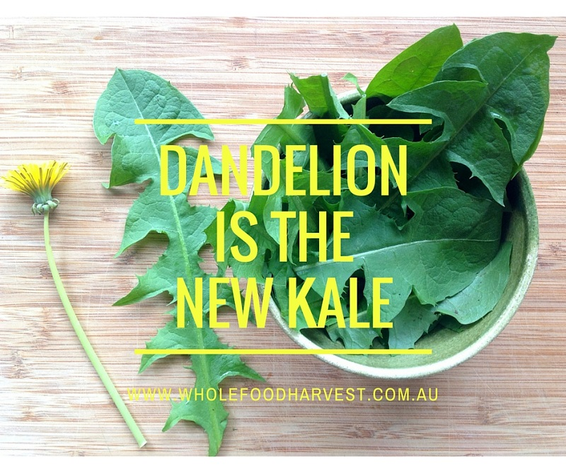 Dandelion Is The New Kale!