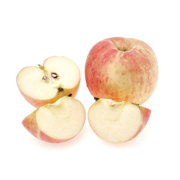 Organic Apples, Juicing Red – 9kg